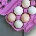 Egg Nutrition 101: Healthy or Unhealthy?