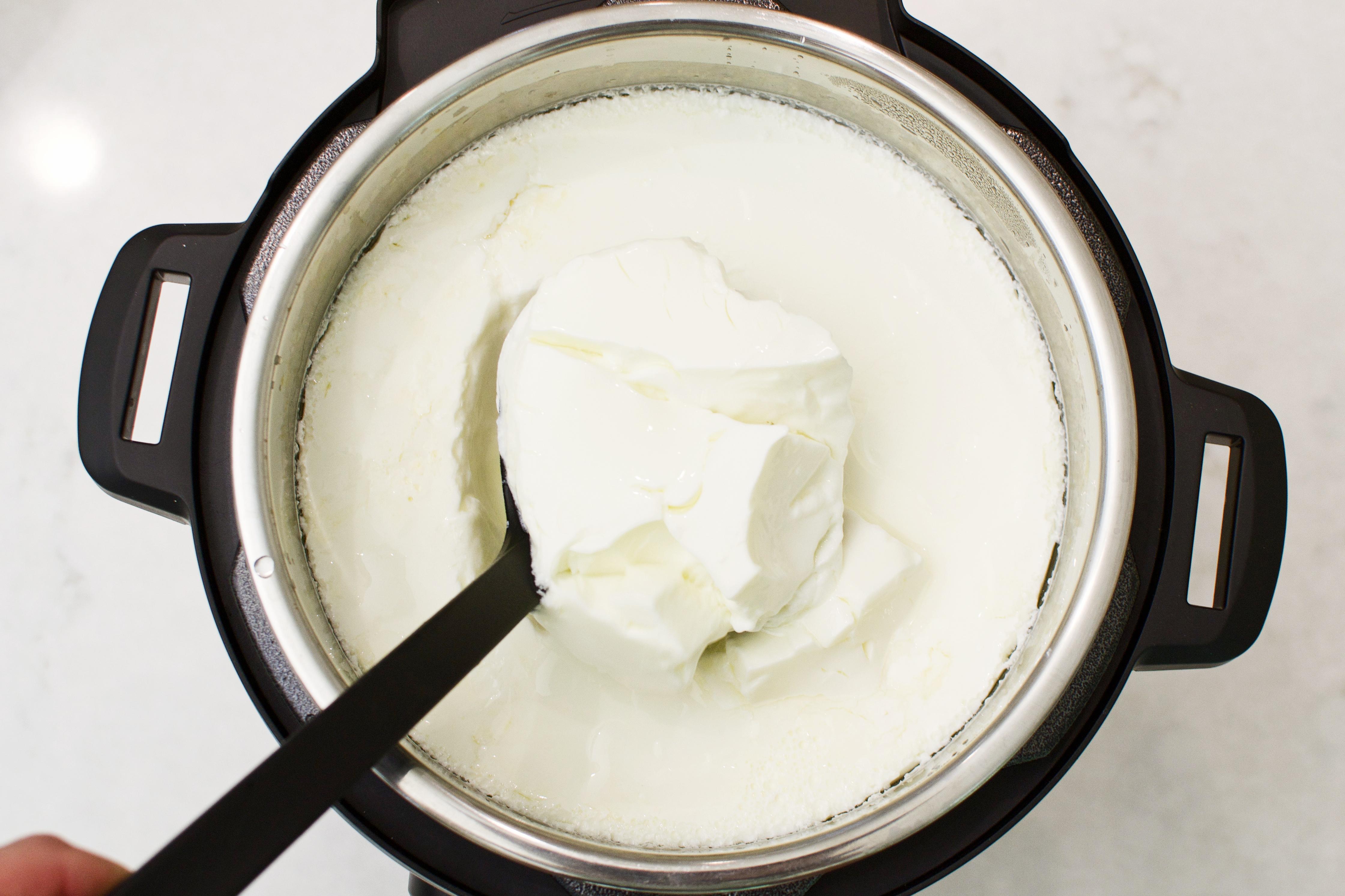 instapot yogurt recipe cheap online
