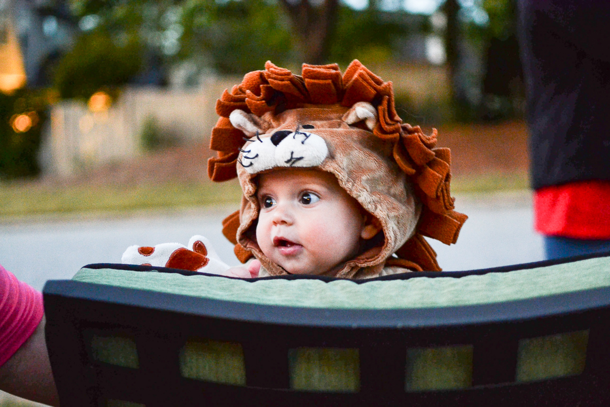 ba0d0493d459a 11 Best Kids DIY Halloween Costumes for Free or Cheap - Building Our Rez