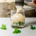 Mocha Mint Julep Cocktail Recipe